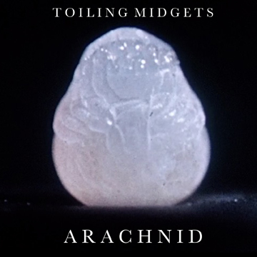 Toiling Midgets Have New Single and Video!